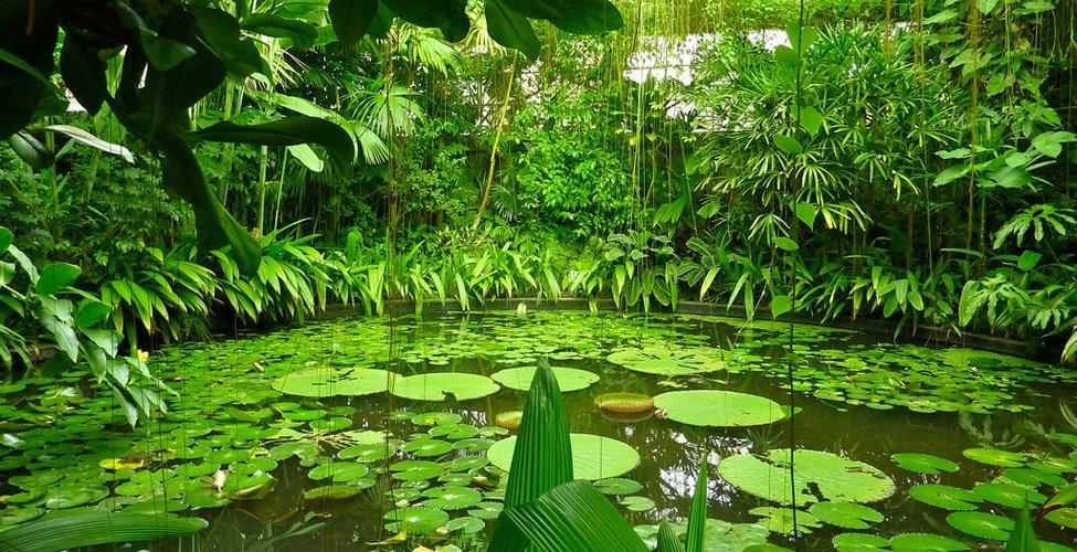 La cara verde de bogot una ciudad que estimula todos los for Arriendos en ciudad jardin sur bogota