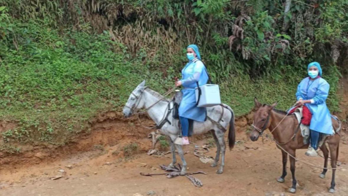 Les vaccins arrivent à dos de mule !